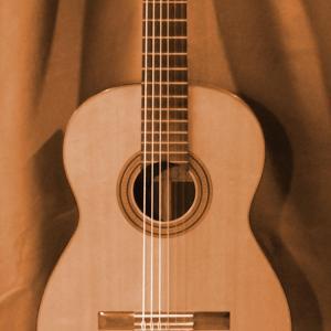 Foto einer Konzertgitarre