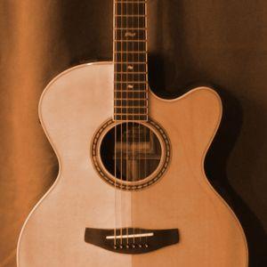 Foto einer Westerngitarre